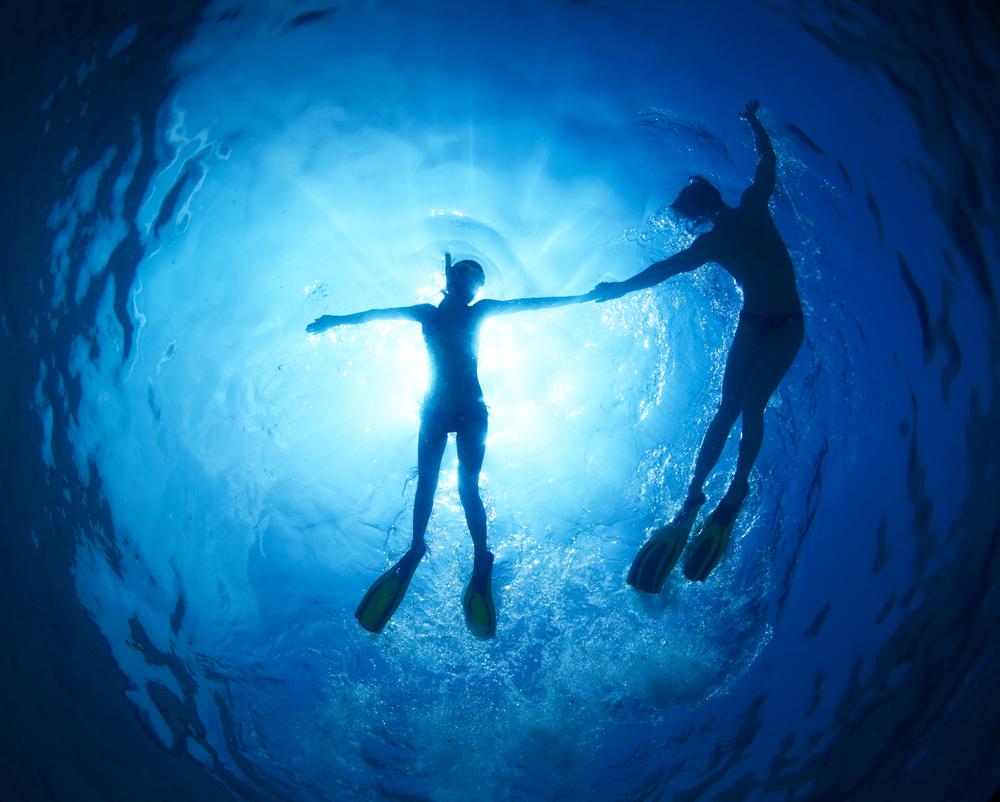 海の中を泳ぐカップル