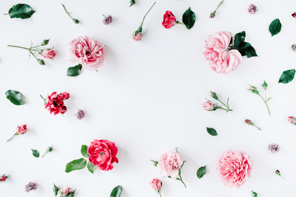 バラの置き画